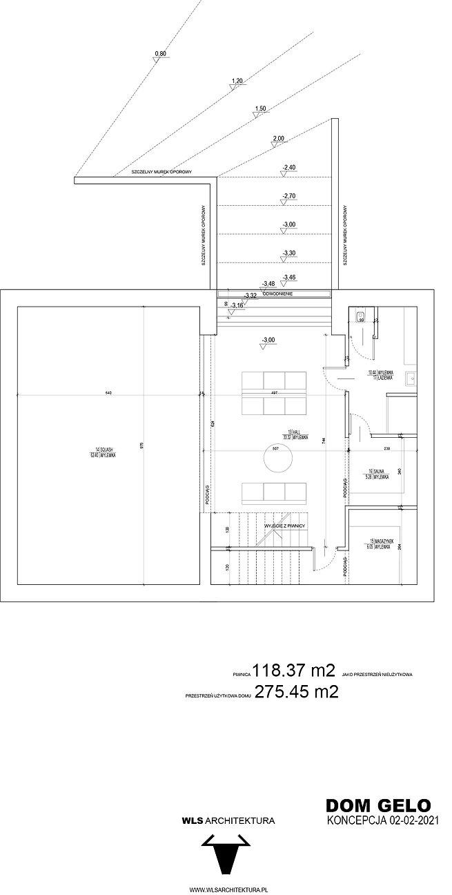 WLS_DG_PIWNICA_05-02-2021 copy.jpg