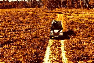 Road surf trip 7_edited.jpg