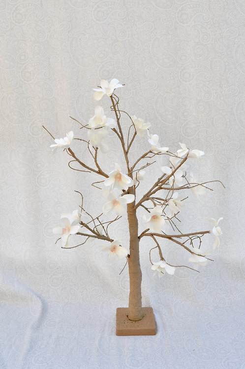 2' Lit Magnolia Trees