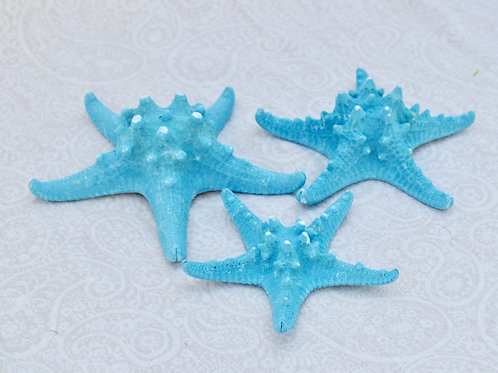 Turquoise Starfish Medium
