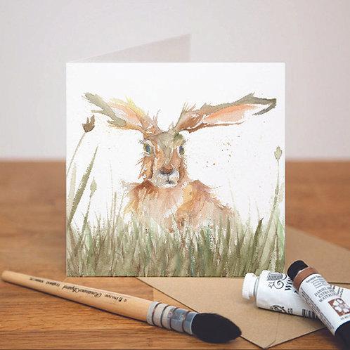 Solo Hare Card