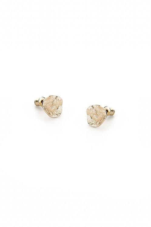 Shell Gold Earrings
