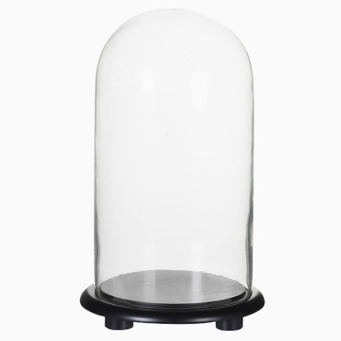 Large Glass Dome