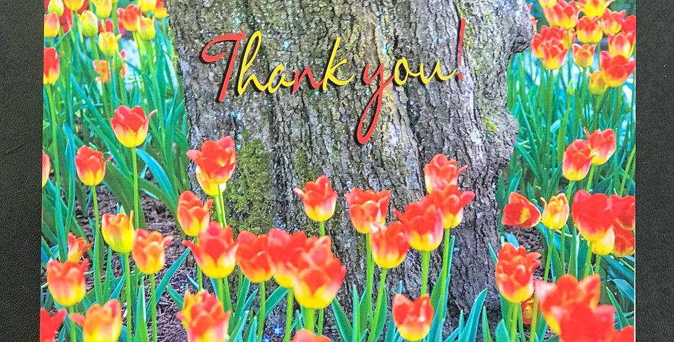 "Card, 8.5"" x 5.5"" - Tulips Around a Tree. ""Thank You."" Blank inside."