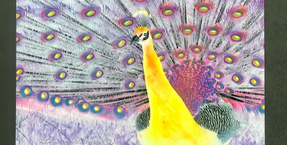 "Card, 8.5"" x 5.5"" - Golden Peacock. Blank inside"