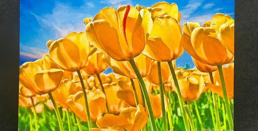 "Card, 8.5"" x 5.5""  - Golden Tulips. Blank inside"