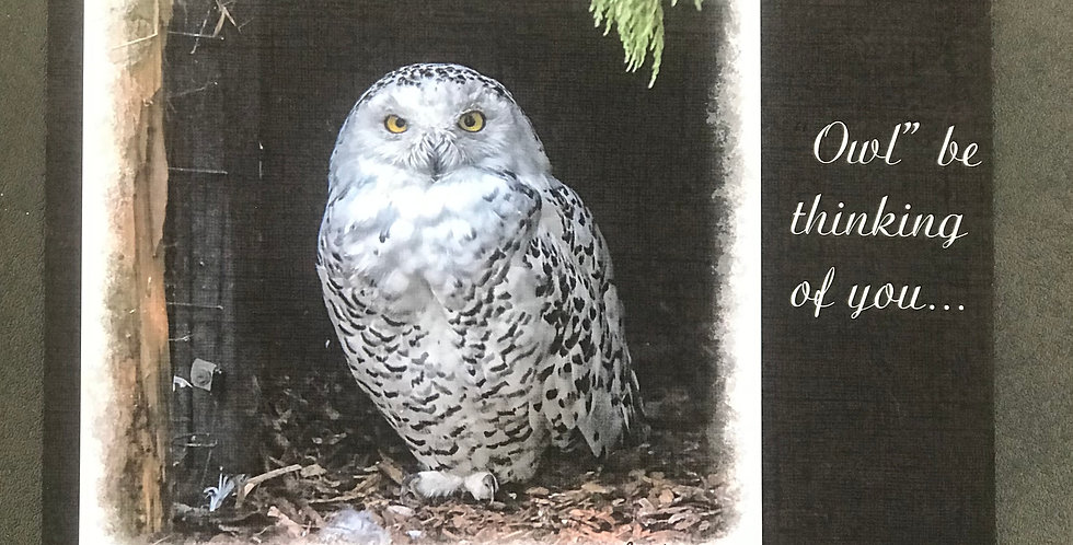 "Card,  5.5"" x 8.5"" - Owl Be Thinking of You. Blank inside"