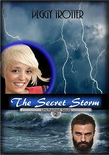 The Secret Storm Cover~Media.jpg