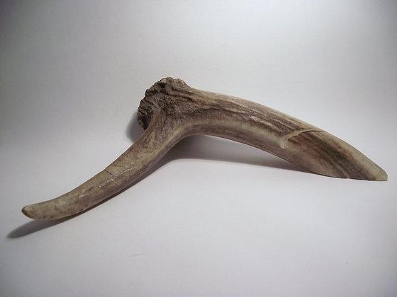 Deer Antler stand
