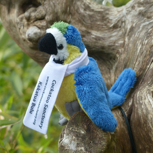 Blue & Gold Macaw Soft Toy With Branded Scarf