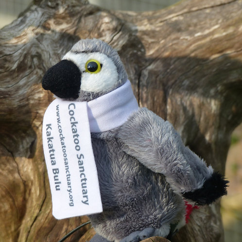 African Grey Parrot Soft Toy With Branded Scarf