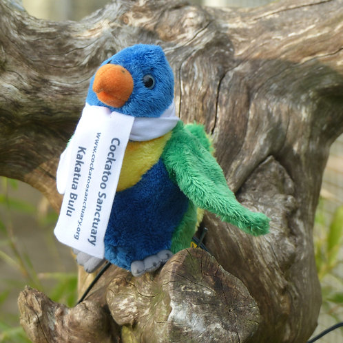 Rainbow Lorikeet Soft Toy With Branded Scarf