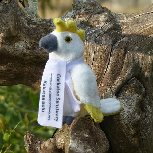 Cockatoo Soft Toy With Branded Scarf