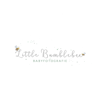 LOGO PNG ohne baby.png