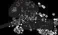 ORR - Logoc- Transparent.png