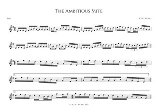 The Ambitious Mite