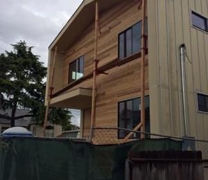 M House Progress