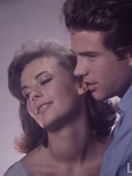 esplendor-en-la-hierba-1961-cine-clsico-siglo-xx-11.jpg