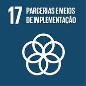 Parcerias e Meios de Implementação - ODS 17