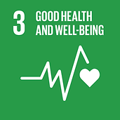 Good Health and Well-Being - SDG 3