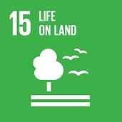 Life On Land - SDG 15