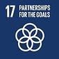 Partnerships For The Goals - SDG 17