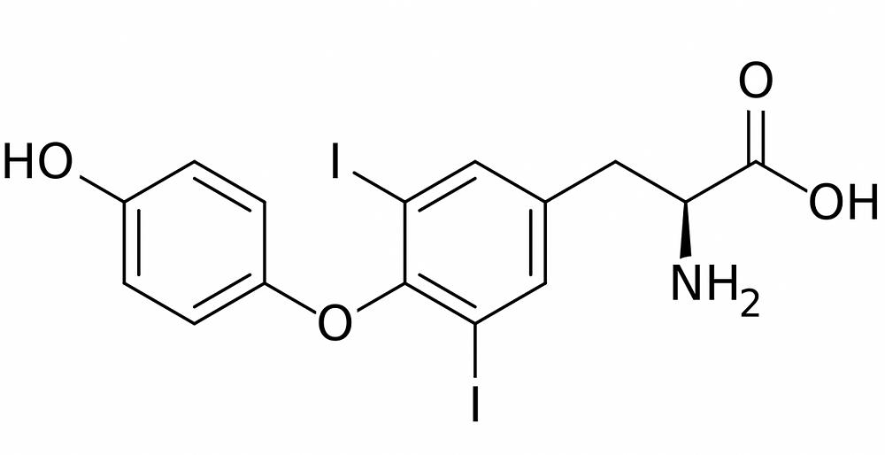 3,5-Diiodothyronine
