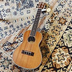 cours de ukulele caen bonnaventure piano