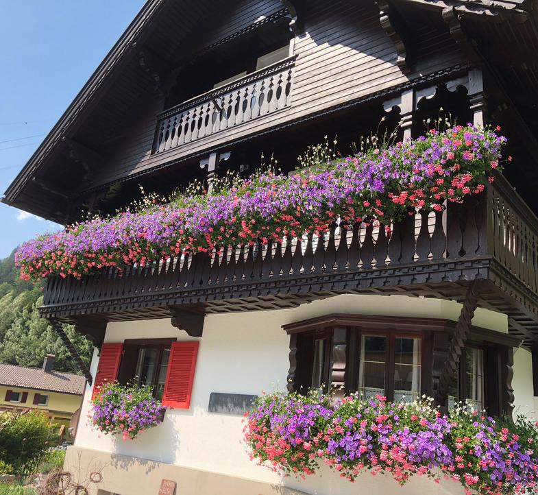 Haus-Berta-Sommer.jpg