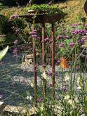 Garten im Haus Bera