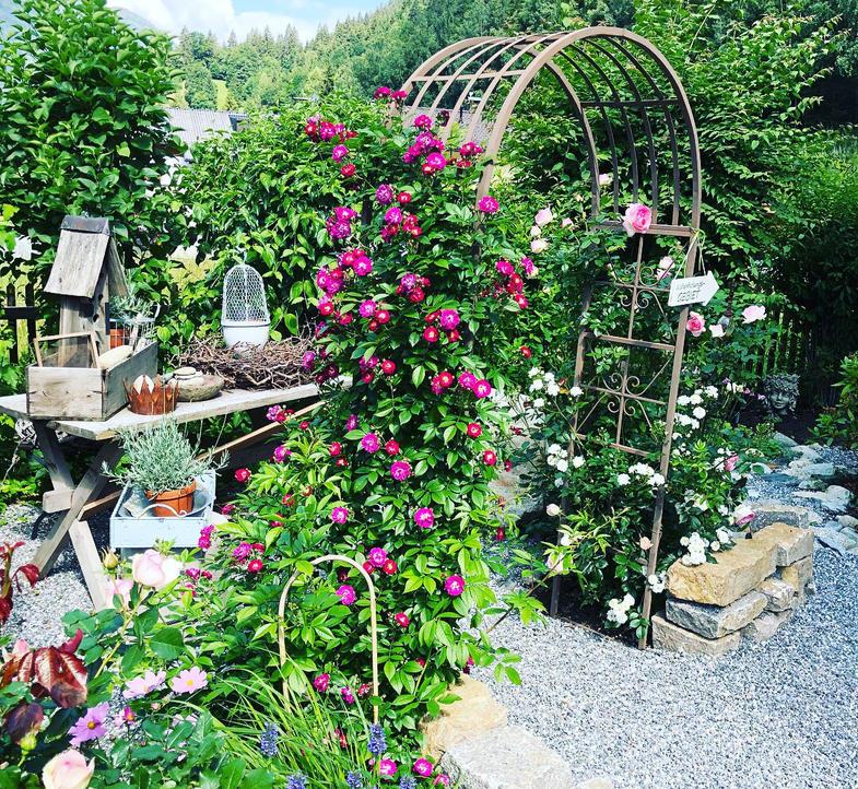 Garten Haus Berta Montafon.jpg