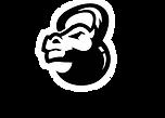 logo Thorus.png