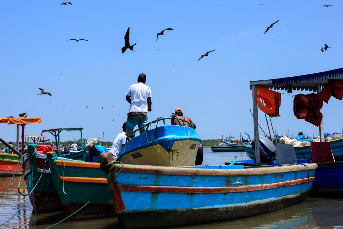 - La côte pacifique péruvienne -