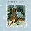 Thumbnail: CD: Joy, A Christmas Collection