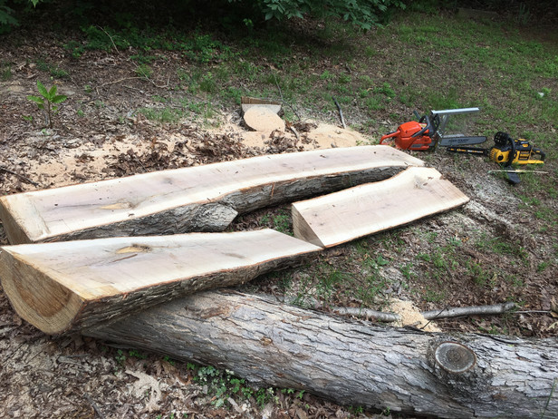 Make your own lumber!