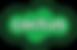 cactus logo.png