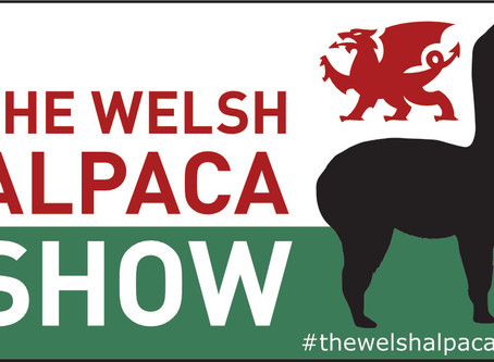 Join us at The Welsh Alpaca Show