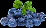 purepng.com-blueberryberryfruitdelicious