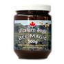 bee-magic.png