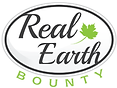 Real_Earth.png