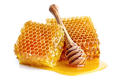 honeycomb-transparent-background-15.png