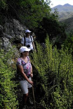 Baviaanskloof hiking