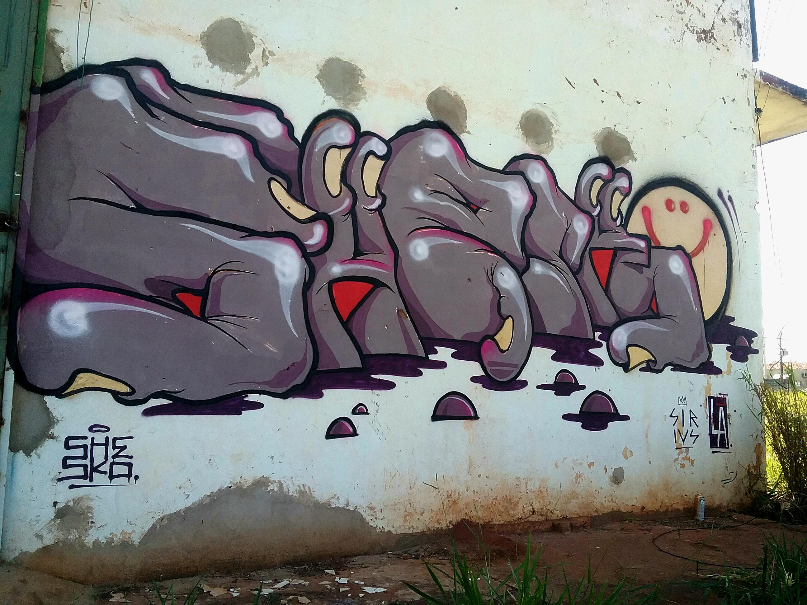 Shesko-barretos1