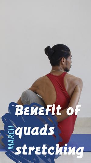 下肢蹲類訓練 與 淺層前側筋膜線