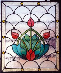 tulipcluster