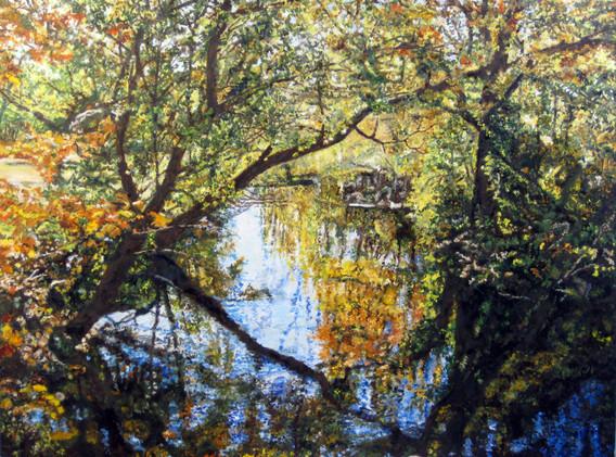 Fall Reflections-III 18x24.JPG