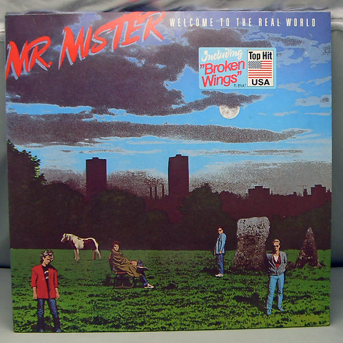 Mr. Mister – Welcome To The Real 1985 Germany