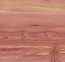 Aromatic-Cedar.png