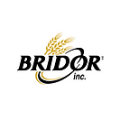 Logo Bridor.png