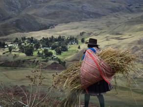 Ocho desafíos y sus soluciones planteados por los pueblos indígenas